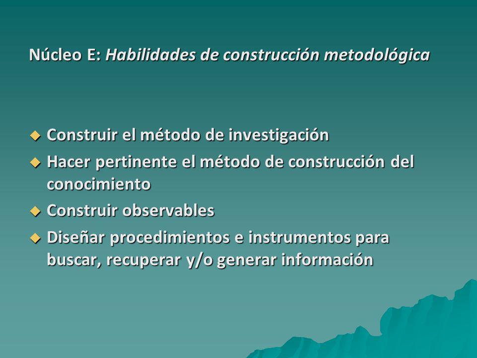 Núcleo E: Habilidades de construcción metodológica