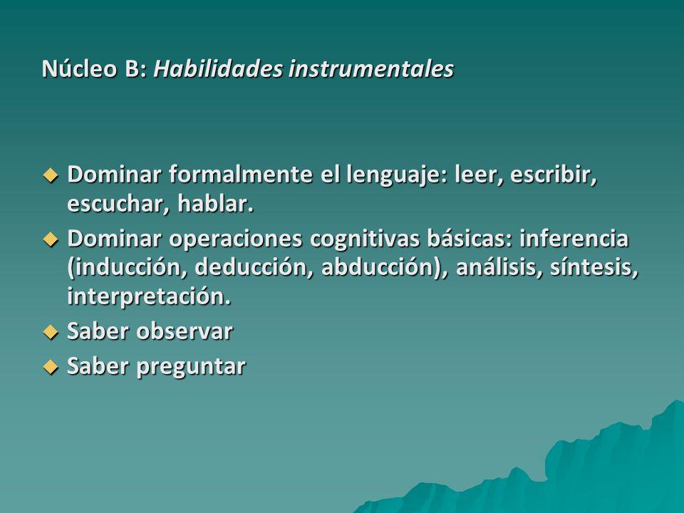 Núcleo B: Habilidades instrumentales