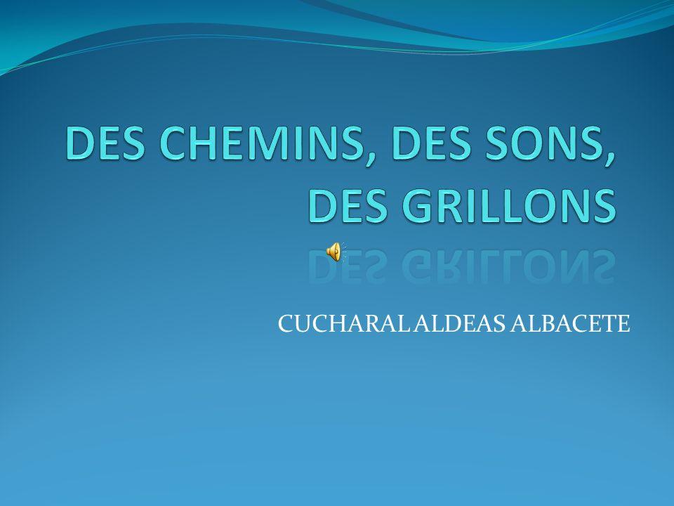 DES CHEMINS, DES SONS, DES GRILLONS