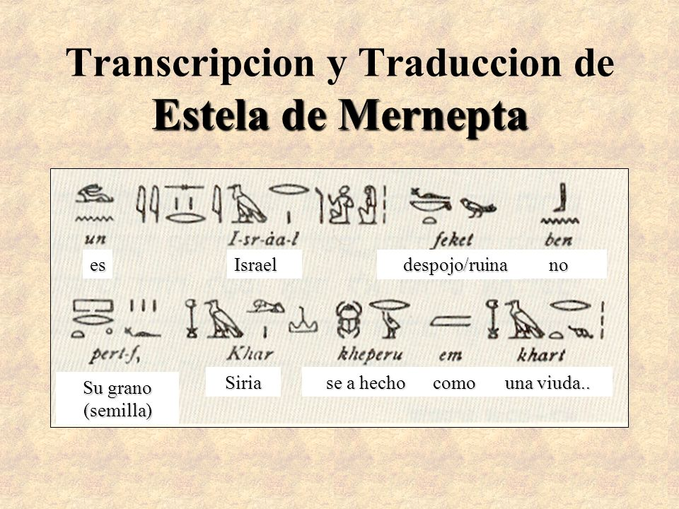 Transcripcion y Traduccion de Estela de Mernepta