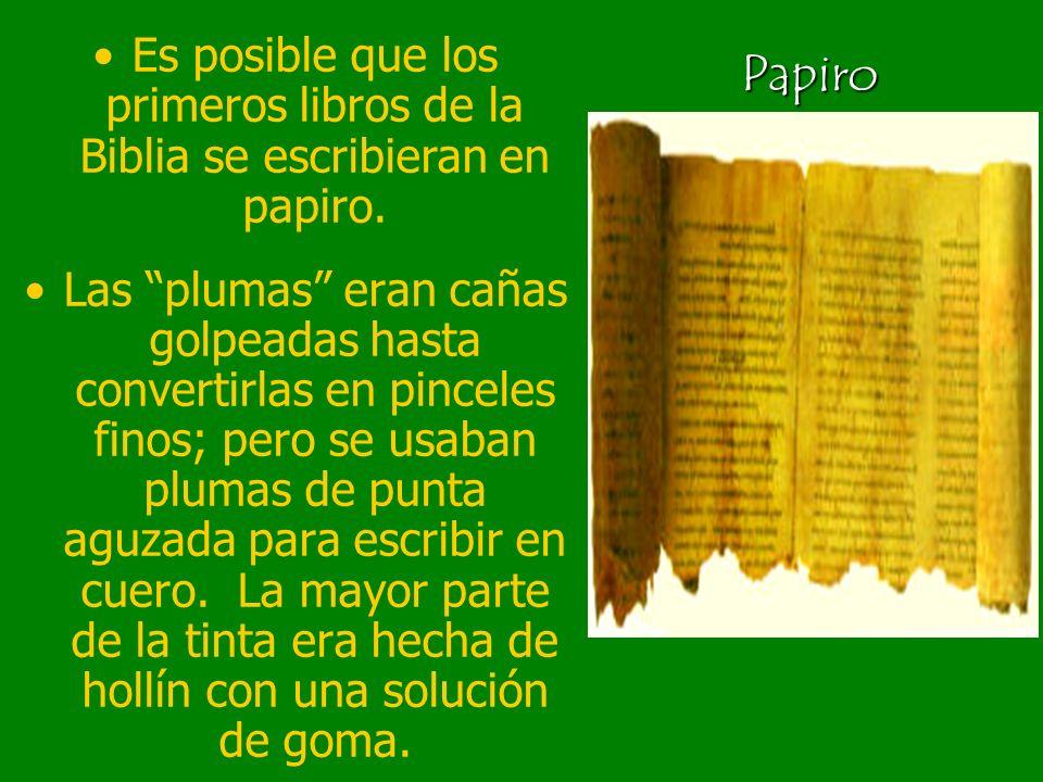 Es posible que los primeros libros de la Biblia se escribieran en papiro.