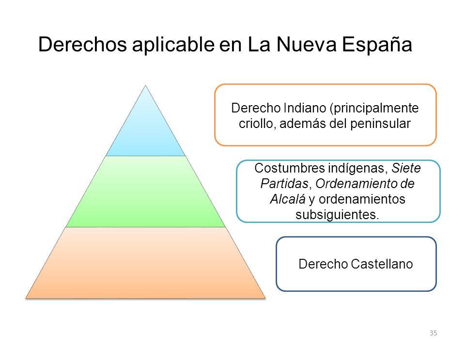 Derechos aplicable en La Nueva España