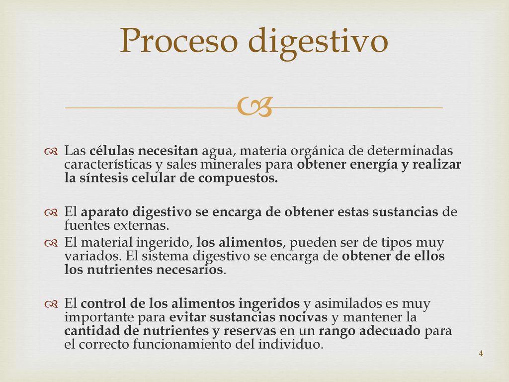 Vistoso Anatomía Y La Fisiología De Libro De Respuestas Para ...