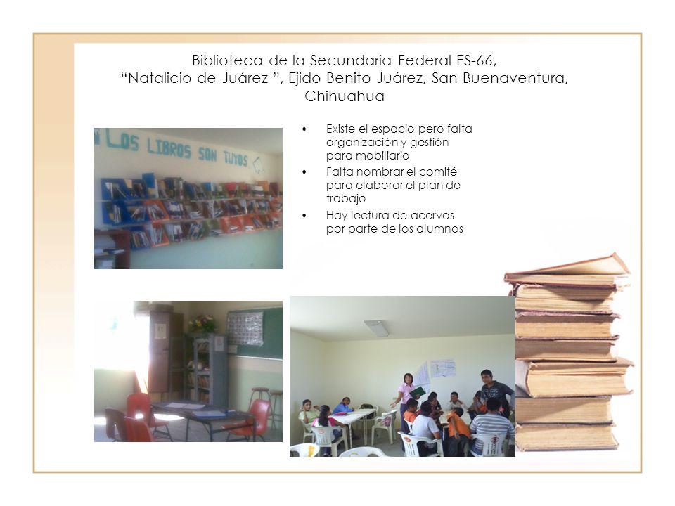 Biblioteca de la Secundaria Federal ES-66, Natalicio de Juárez , Ejido Benito Juárez, San Buenaventura, Chihuahua