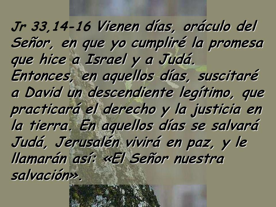Jr 33,14-16 Vienen días, oráculo del Señor, en que yo cumpliré la promesa que hice a Israel y a Judá.