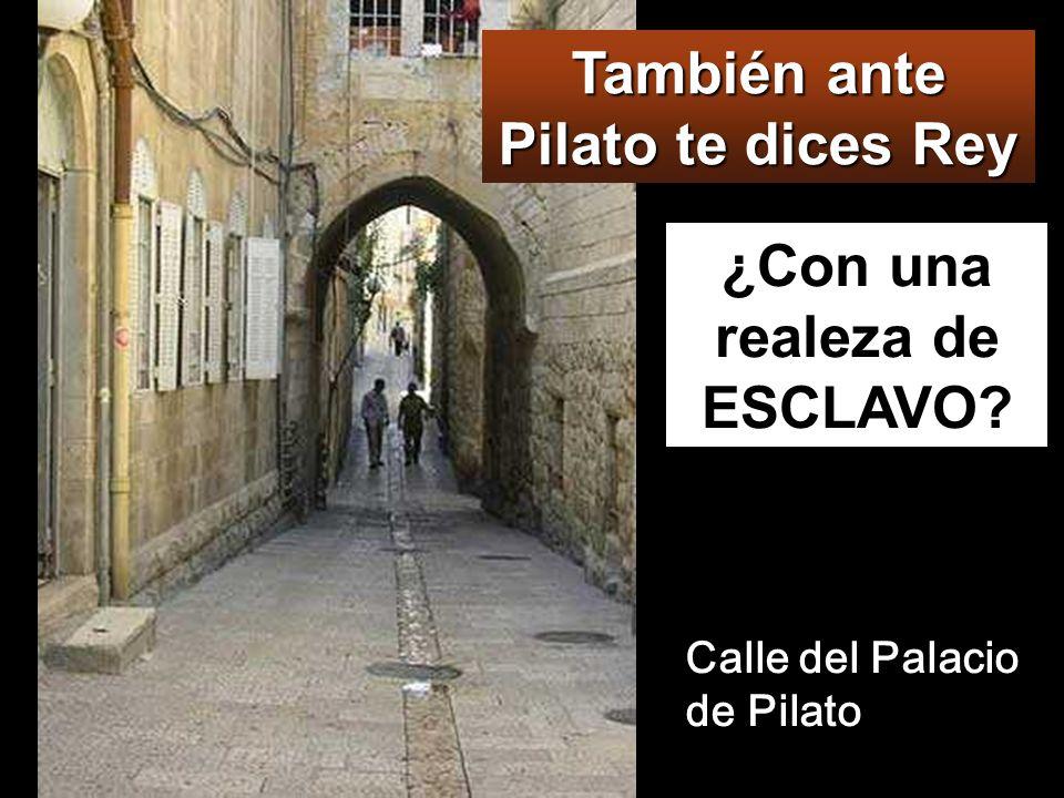 También ante Pilato te dices Rey ¿Con una realeza de ESCLAVO
