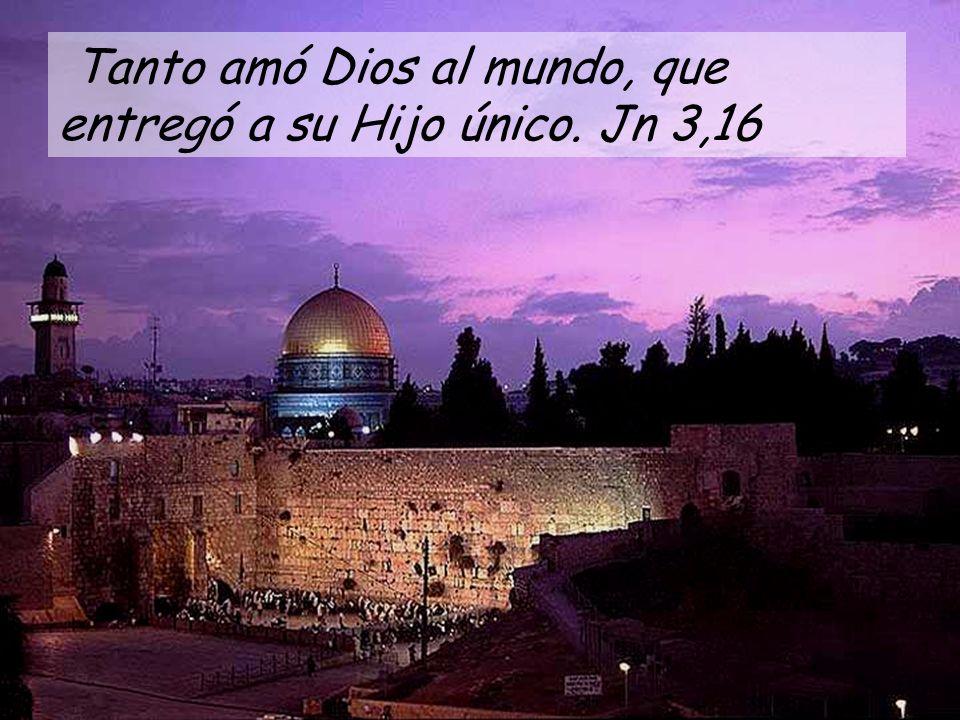 Tanto amó Dios al mundo, que entregó a su Hijo único. Jn 3,16