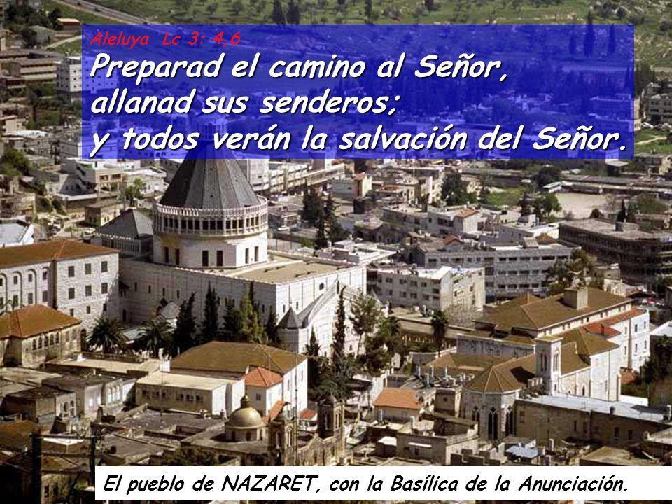 Aleluya Lc 3: 4,6 Preparad el camino al Señor, allanad sus senderos; y todos verán la salvación del Señor.