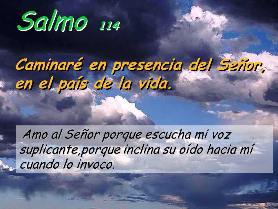 Salmo 114 Caminaré en presencia del Señor, en el país de la vida.