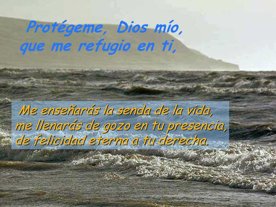 Protégeme, Dios mío, que me refugio en ti,
