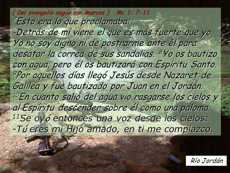 ( Del evangelio según san Marcos ) Mc 1: 7-11 7Esto era lo que proclamaba: -Detrás de mí viene el que es más fuerte que yo. Yo no soy digno ni de postrarme ante él para desatar la correa de sus sandalias. 8Yo os bautizo con agua, pero él os bautizará con Espíritu Santo. 9Por aquellos días llegó Jesús desde Nazaret de Galilea y fue bautizado por Juan en el Jordán. 10En cuanto salió del agua vio rasgarse los cielos y al Espíritu descender sobre él como una paloma. 11Se oyó entonces una voz desde los cielos: -Tú eres mi Hijo amado, en ti me complazco.