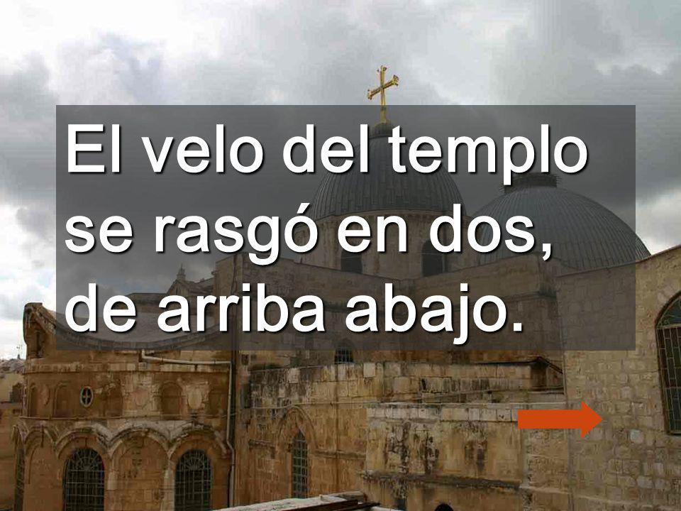 El velo del templo se rasgó en dos, de arriba abajo.