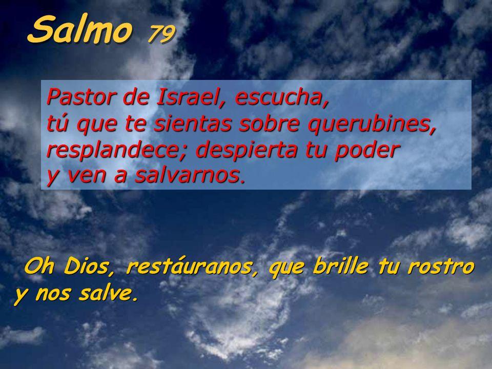 Salmo 79 Pastor de Israel, escucha, tú que te sientas sobre querubines, resplandece; despierta tu poder y ven a salvarnos.