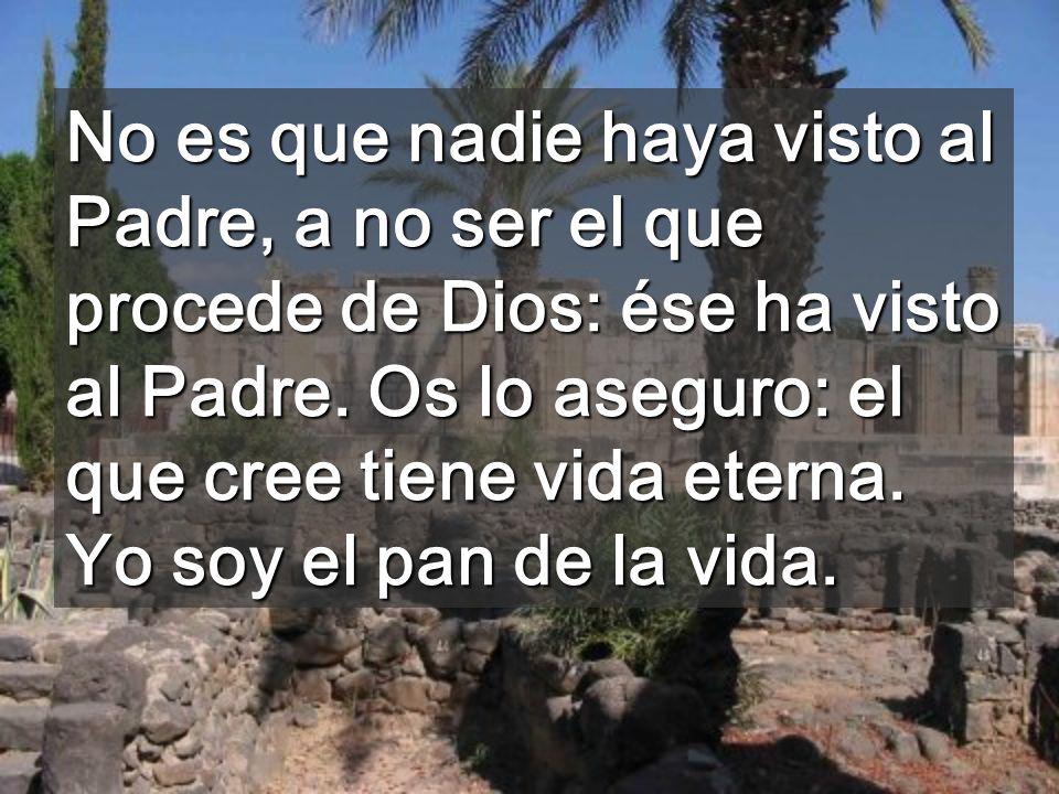 No es que nadie haya visto al Padre, a no ser el que procede de Dios: ése ha visto al Padre.