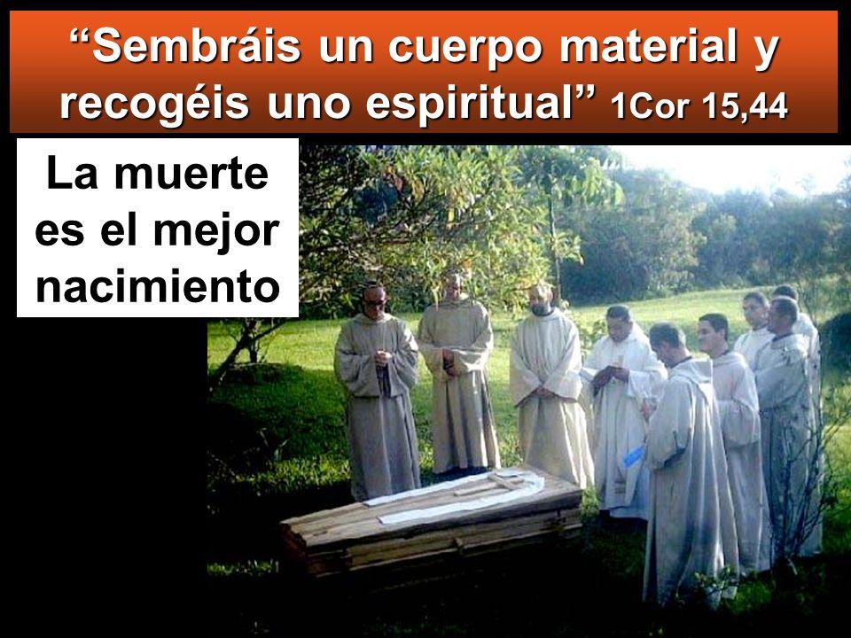Sembráis un cuerpo material y recogéis uno espiritual 1Cor 15,44