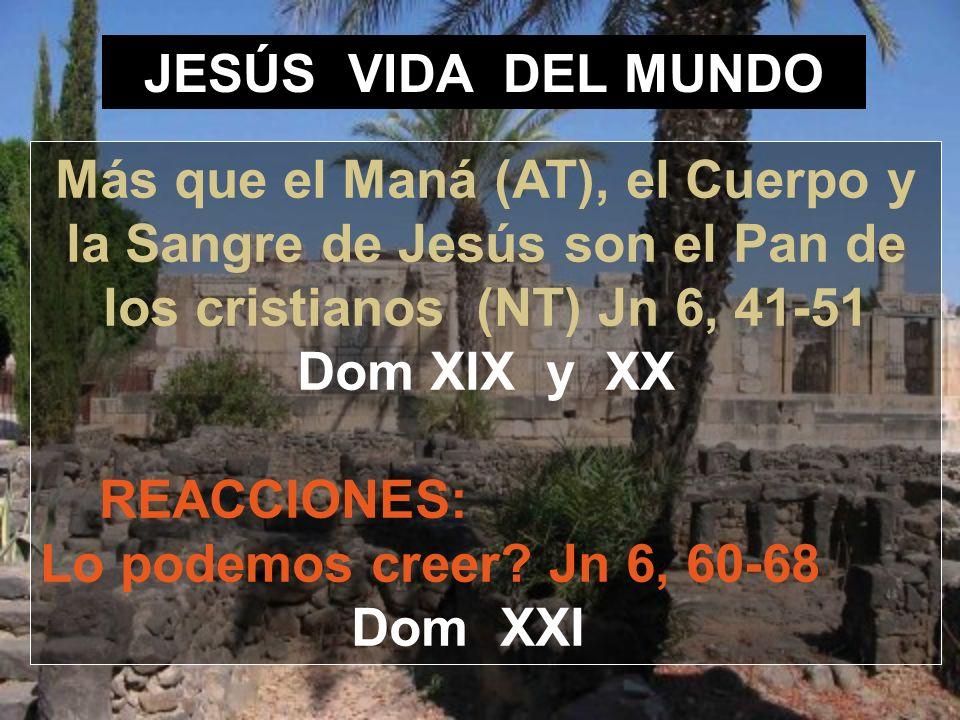 JESÚS VIDA DEL MUNDO Más que el Maná (AT), el Cuerpo y la Sangre de Jesús son el Pan de los cristianos (NT) Jn 6, 41-51 Dom XIX y XX.