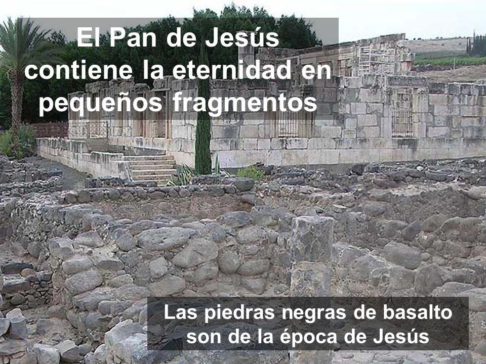 El Pan de Jesús contiene la eternidad en pequeños fragmentos