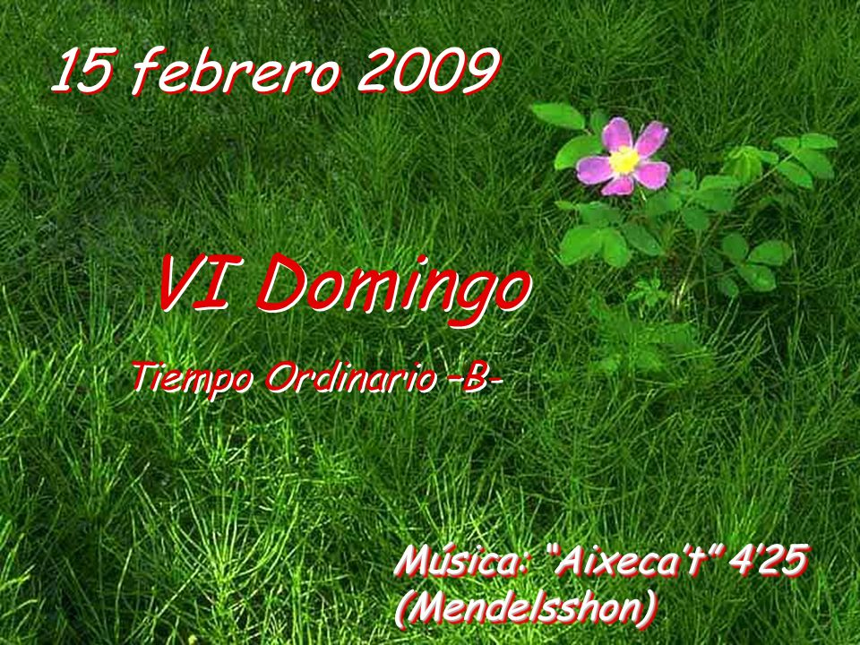 VI Domingo 15 febrero 2009 Tiempo Ordinario –B-