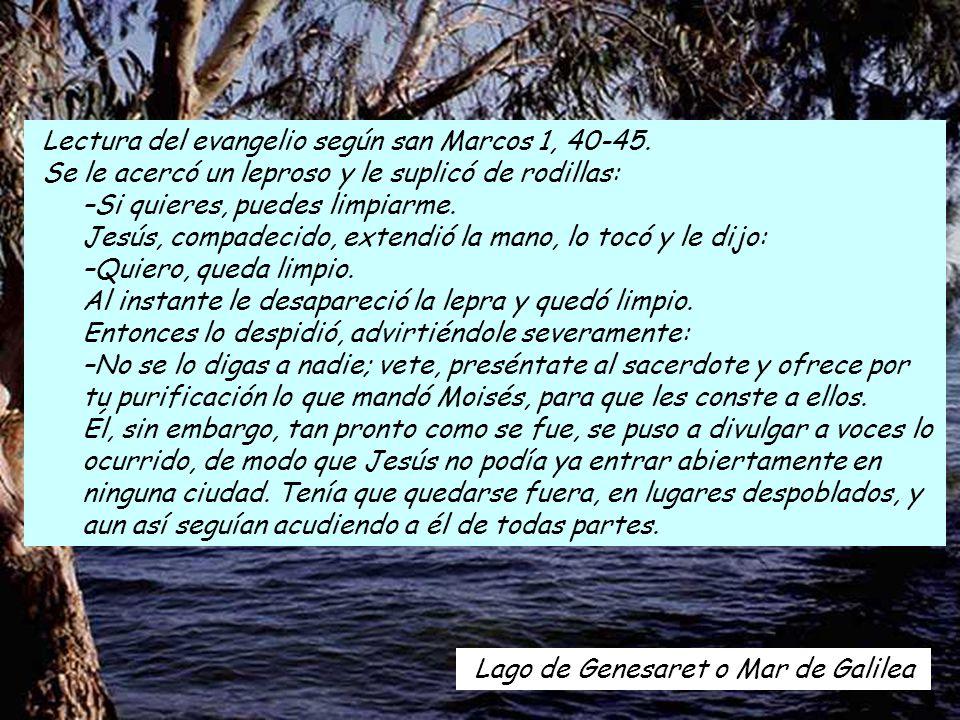 Lectura del evangelio según san Marcos 1, 40-45.