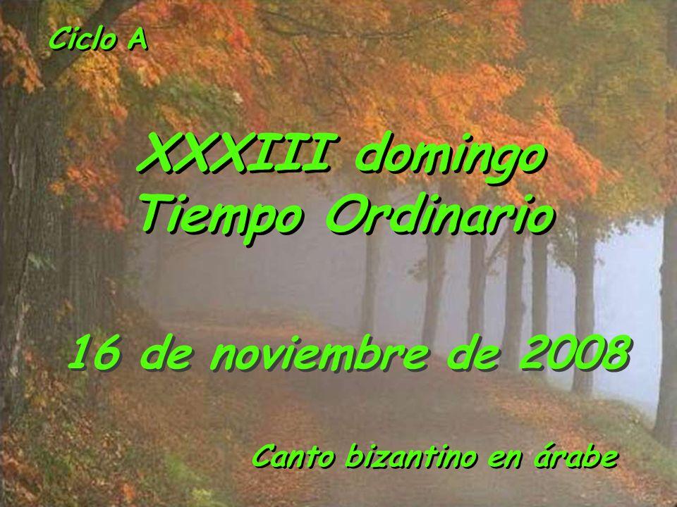 XXXIII domingo Tiempo Ordinario