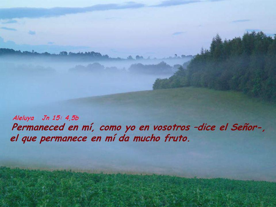 Aleluya Jn 15: 4,5bPermaneced en mí, como yo en vosotros –dice el Señor-, el que permanece en mí da mucho fruto.