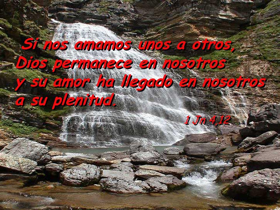 y su amor ha llegado en nosotros a su plenitud. 1 Jn 4,12