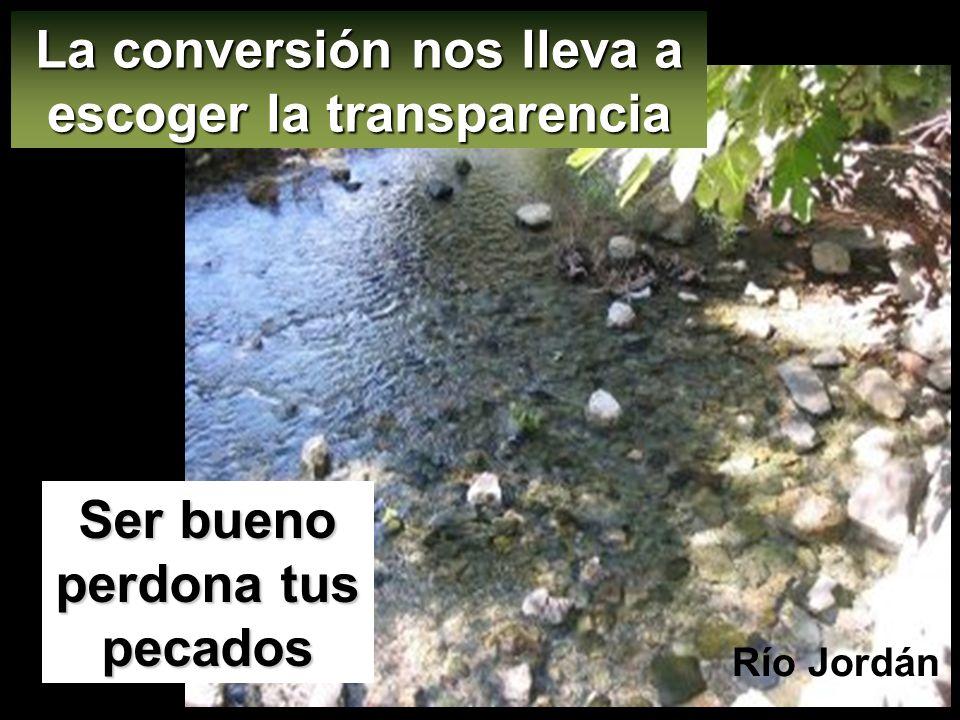La conversión nos lleva a escoger la transparencia