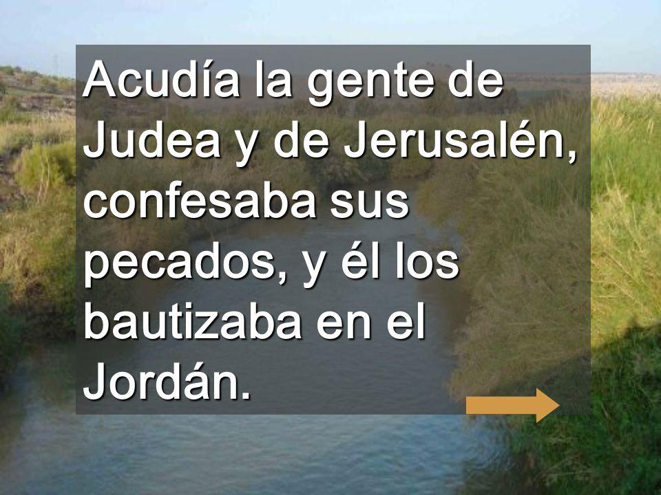 Acudía la gente de Judea y de Jerusalén, confesaba sus pecados, y él los bautizaba en el Jordán.