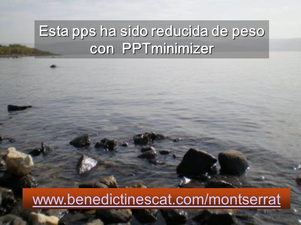 Esta pps ha sido reducida de peso con PPTminimizer