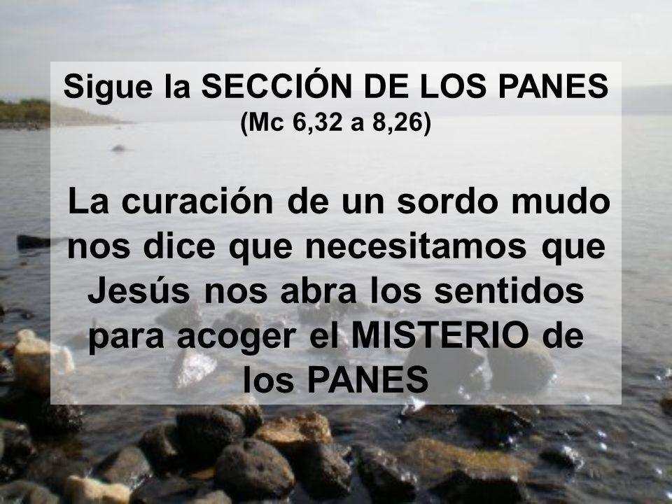 Sigue la SECCIÓN DE LOS PANES (Mc 6,32 a 8,26)
