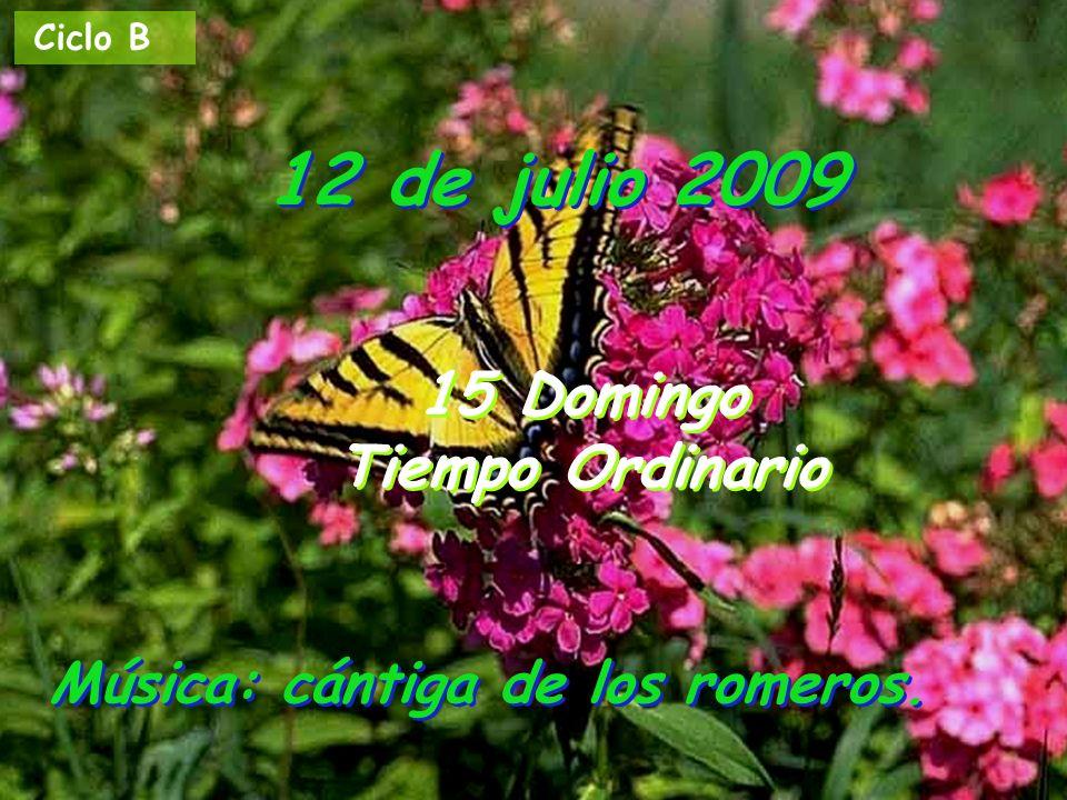 12 de julio 2009 15 Domingo Tiempo Ordinario