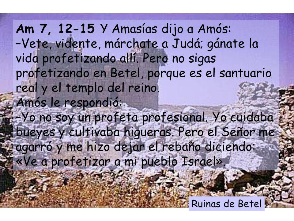 Am 7, 12-15 Y Amasías dijo a Amós: –Vete, vidente, márchate a Judá; gánate la vida profetizando allí. Pero no sigas profetizando en Betel, porque es el santuario real y el templo del reino. Amós le respondió: –Yo no soy un profeta profesional. Yo cuidaba bueyes y cultivaba higueras. Pero el Señor me agarró y me hizo dejar el rebaño diciendo: «Ve a profetizar a mi pueblo Israel».