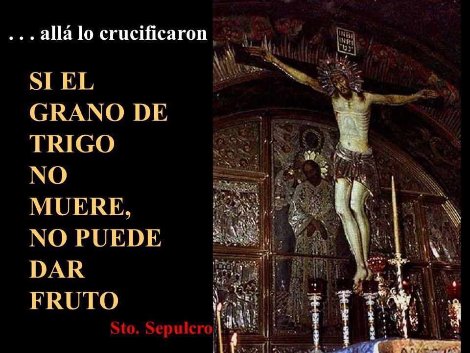 SI EL GRANO DE TRIGO NO MUERE, NO PUEDE DAR FRUTO