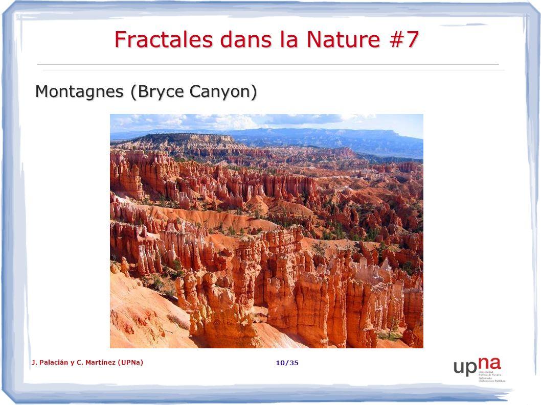 Fractales dans la Nature #7