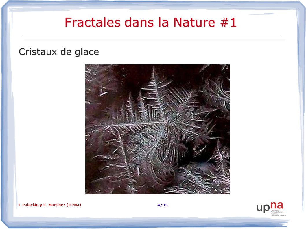 Fractales dans la Nature #1