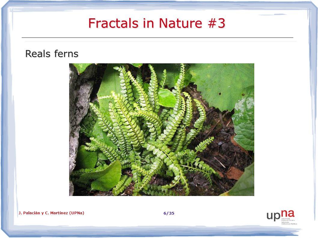 Fractals in Nature #3 Reals ferns J. Palacián y C. Martínez (UPNa)