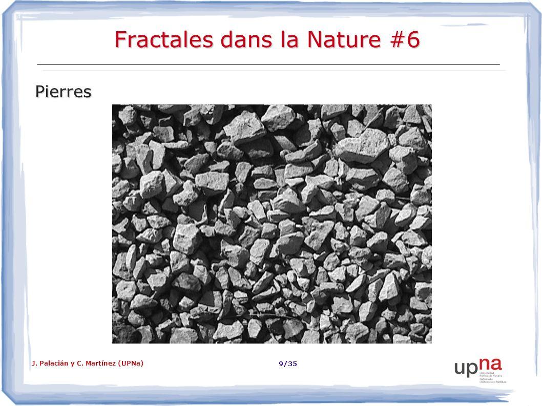 Fractales dans la Nature #6