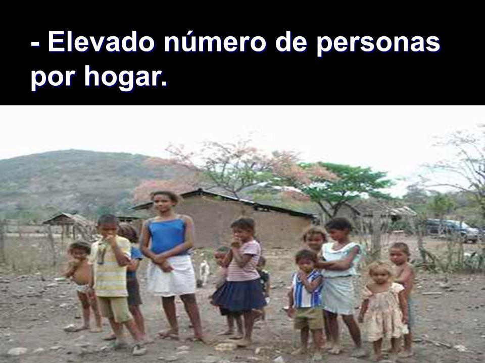 - Elevado número de personas por hogar.