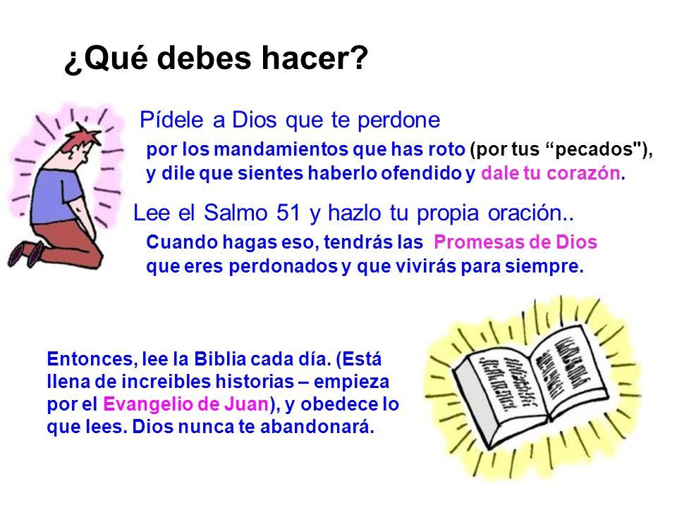 Evangelio 13 ¿Qué debes hacer