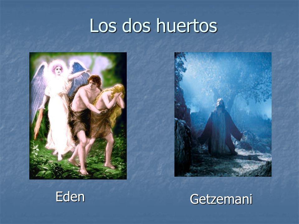 Los dos huertos Eden Getzemani