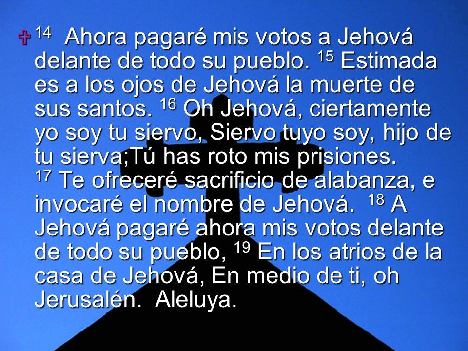 14 Ahora pagaré mis votos a Jehová delante de todo su pueblo