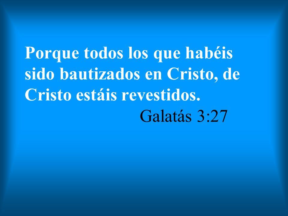 Porque todos los que habéis sido bautizados en Cristo, de Cristo estáis revestidos. Galatás 3:27
