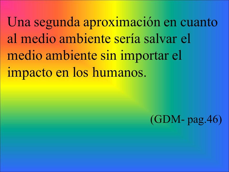 Una segunda aproximación en cuanto al medio ambiente sería salvar el medio ambiente sin importar el impacto en los humanos.