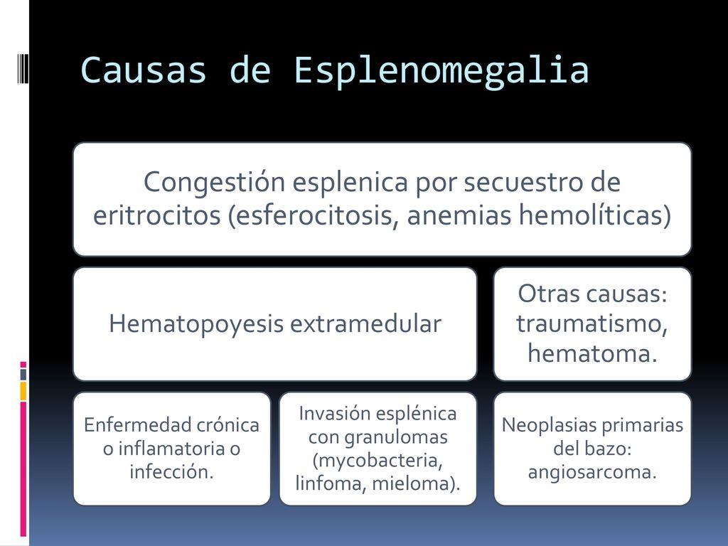 Perfecto Anatomía Y Fisiología Definiciones Composición - Imágenes ...
