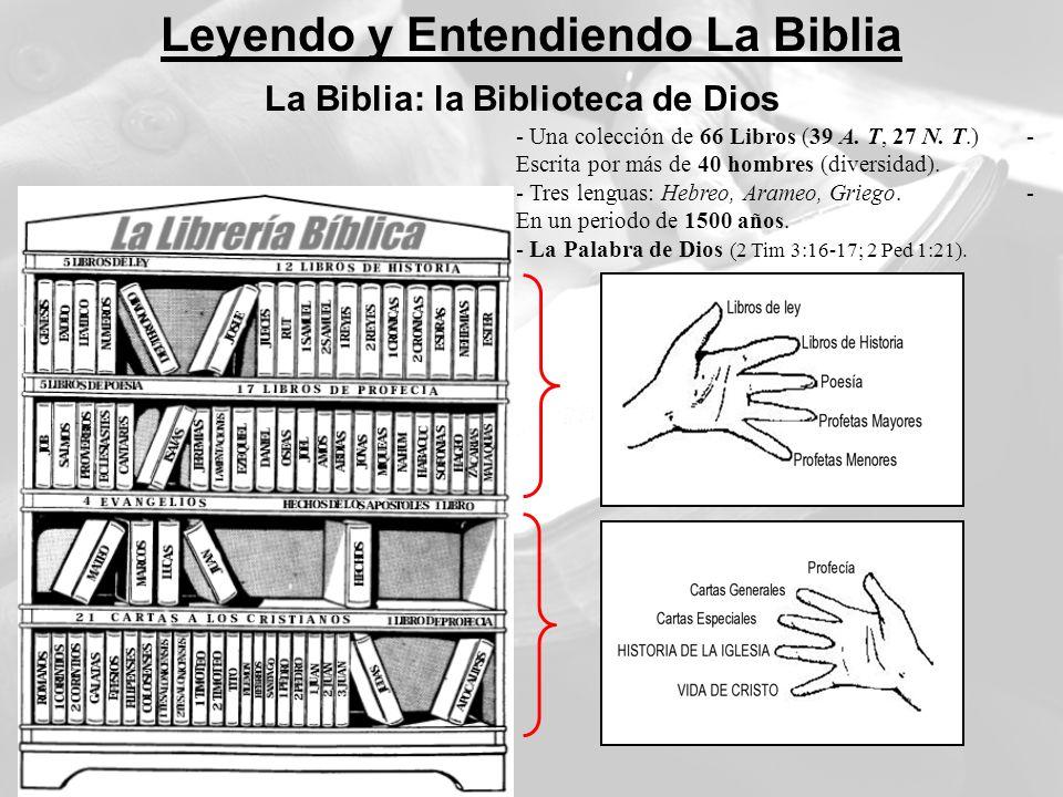 Leyendo y Entendiendo La Biblia La Biblia: la Biblioteca de Dios