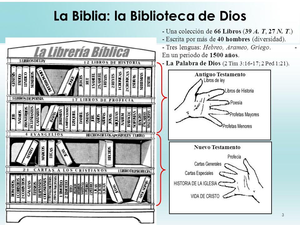 La Biblia: la Biblioteca de Dios