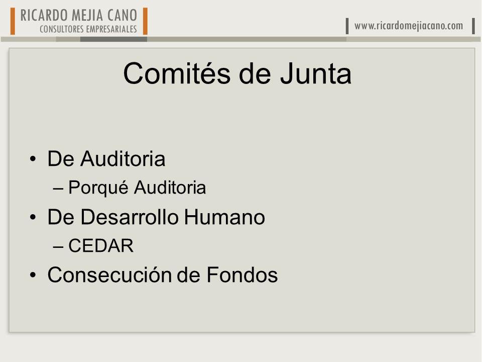 Comités de Junta De Auditoria De Desarrollo Humano