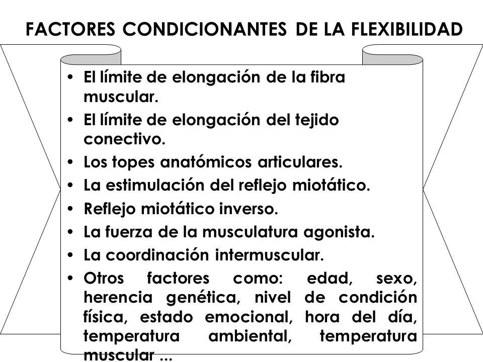 FACTORES CONDICIONANTES DE LA FLEXIBILIDAD