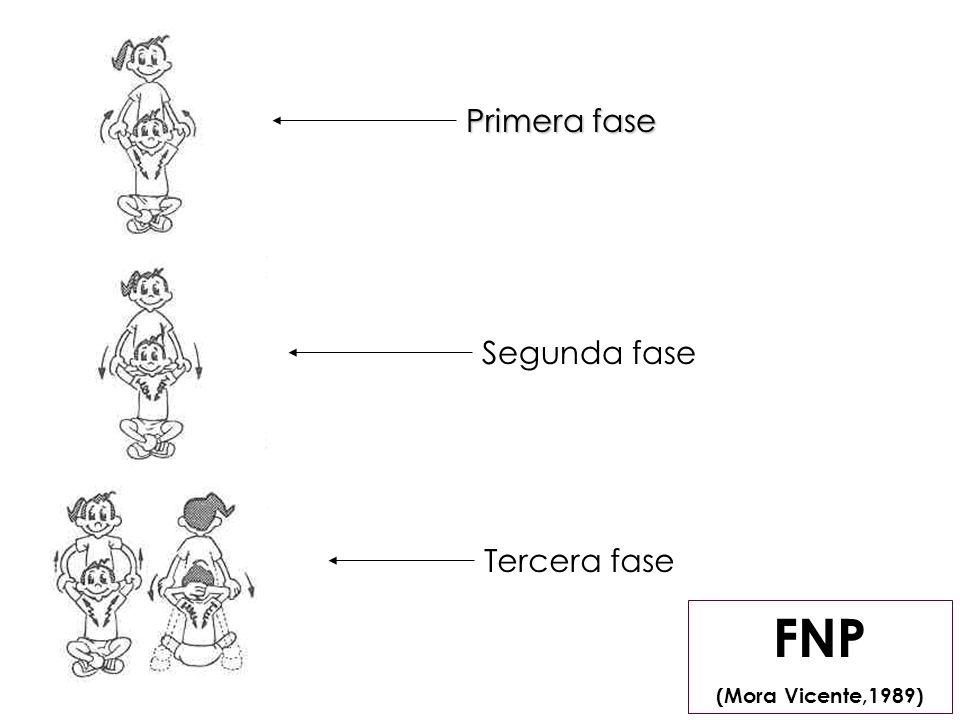 FNP (Mora Vicente,1989) Primera fase Segunda fase Tercera fase