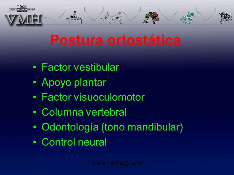 Postura ortostática Factor vestibular Apoyo plantar